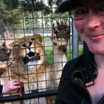 In the caged truck in the lions for feeding. Definately worth the $35