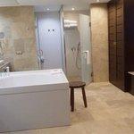 beautiful suite : double sinks walk in shower