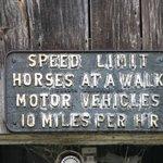 No Speeding