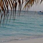 Best beach and ocean ever