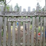Don't miss your chance to explore the Organic Farm