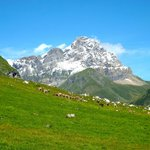 The Heart of the Alps Tour