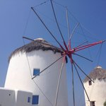 Windmills in summer time