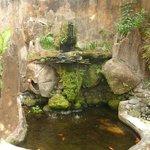 Waterfall/Pond