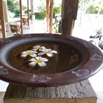 frangipani all'ingresso