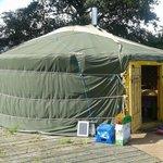 Buzzard Yurt