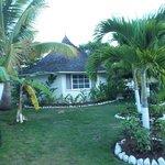Our Garden Cottage