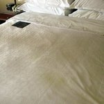 "Sheraton Springfield - King Bed ""stains"""