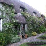 Daphne's Lovely Farmhouse Home
