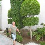 И вот такие деревья там есть...