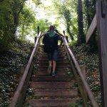 Scale in legno lungo il percorso