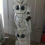 my beautiful owls