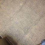 Elevator carpets