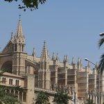 Cathédrale de Palma majestueuse