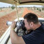 Safari tsavo park kenia