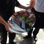 pesce pescato da poco per il pranzo di Ferragosto