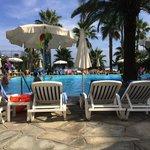 La piscine avec ses magnifiques palmiers