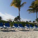 The beach terrace