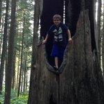 My son climbing away!