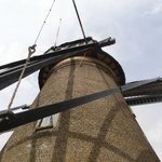 One of the Kinderdijk Windmills