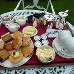 Cream Tea Anyone?