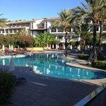 piscine california