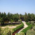 Hotel garden view