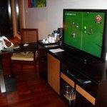 Il televisore della camera e lettore dvd