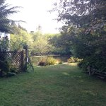 A wonderful lawn area that leads to the pond and more garden areas