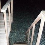 Dal terrazzo dell'overwater si può accedere direttamente in acqua