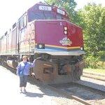Agawa Canyon train tour