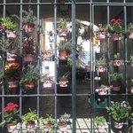 Un cancello in alfama