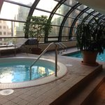 Indoor whirlpool, pool, some of fitness center. A seagull came to check out the pool!