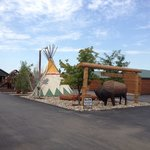 Central area with tepees, BBQ, sauna, hot tub, bar, play structures, etc. The buffalo is a great