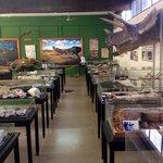 Museu de Paleontologia de Monte Alto