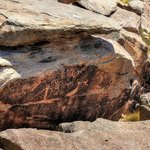 Petroglyphs at one of the stops in Petrified forest. Lot of history here.