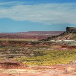 View towards the painted desert, Had some recent rain and more green than usual I suspect.