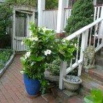 Adorable Front Porch Area