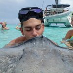 Smooching with the Stingray