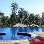 Cocoon pool