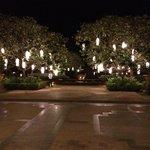 Entrance - beautiful lights!