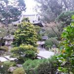 Photo of Japanese Tea Garden taken with TripAdvisor City Guides