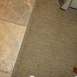 Stains throughout the room on carpet, including drool stains inside of pillow cases on pillows.