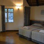 Bedroom / main area