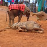 Baby ellie wrapped in Masai cloth to keep warm
