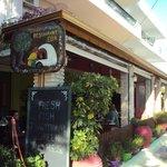 Elia Restaurant Arkoudi