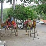 Duddhtalaii and Musical Garden Foto