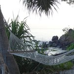 One of the hammocks by the beach