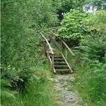Steps to the Lilly Loch - wind your way round the Argyllshire country estate.