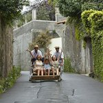 What to do nearby - Madeira typical activities